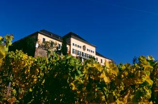 Abb. zu Artikel Tagen mitten in der Weinkultur